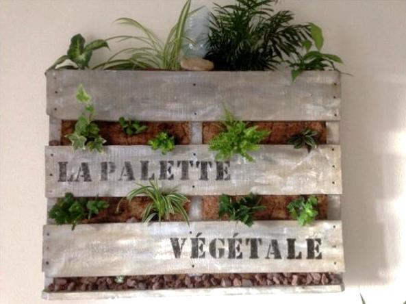 Mur v g tale en palette creation palette for Mur vegetal avec palette en bois